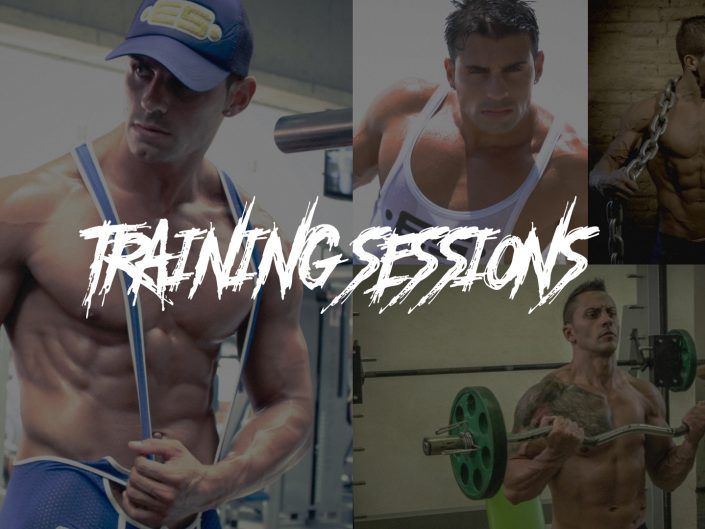 Training Sesions